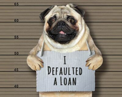 Student Loan Collections: The Breaking Bad Of Loan Servicers and The Perfect Escape Plan